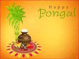 Essay Short Paragraph on Pongal Festival of India